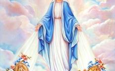 Legião de Maria realiza novena da Medalha Milagrosa na Catedral